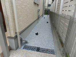 福岡県春日市の外構エクステリアのリフォーム工事例。門まわりが広くなりました。